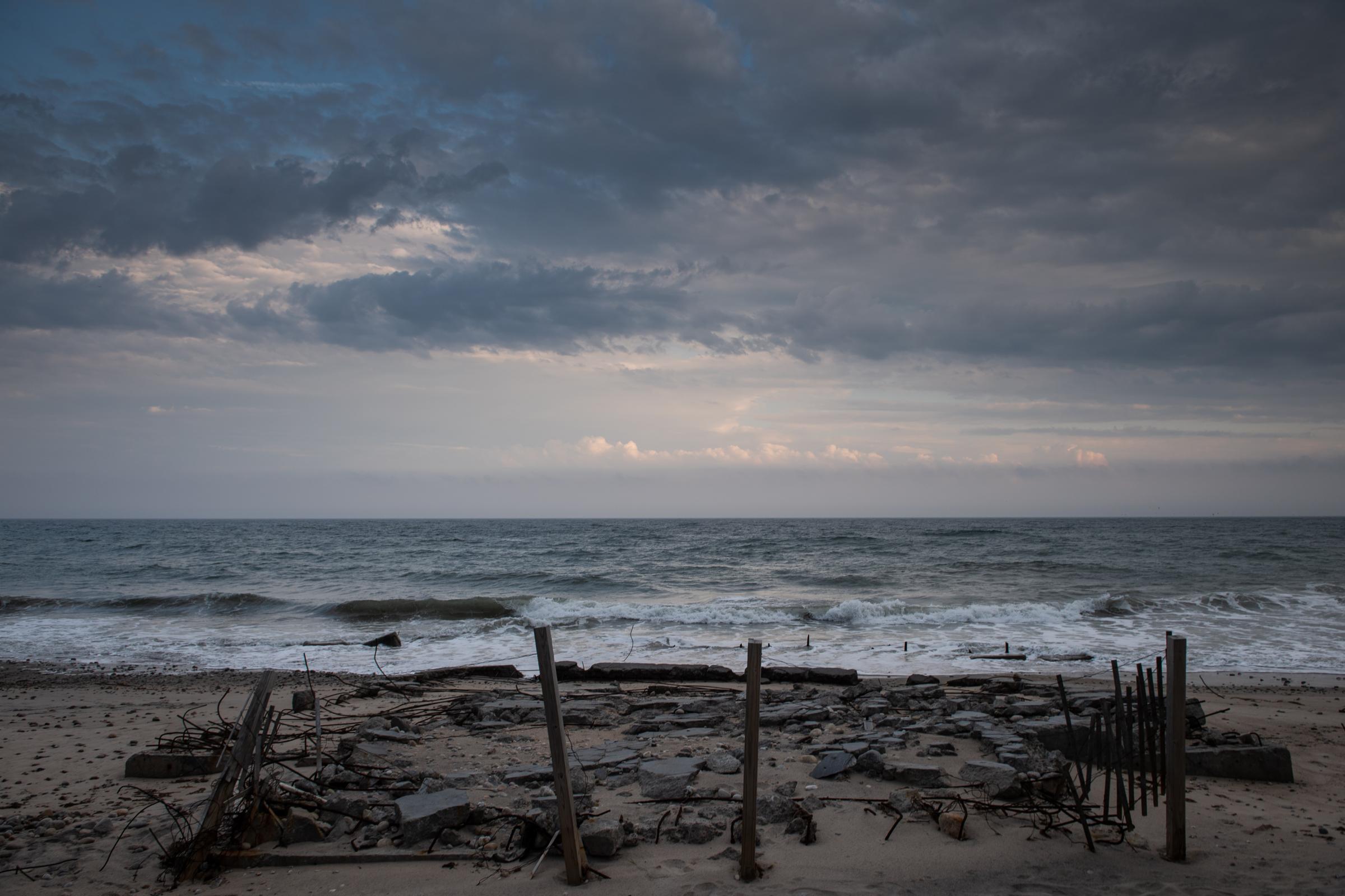 beach covered in wood debris