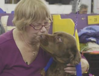 Losing Handler Finds Comfort at Westminster Dog Show